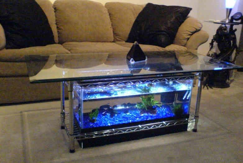 aquarium_jurnalnyi_stolik_4-3361321-1004716