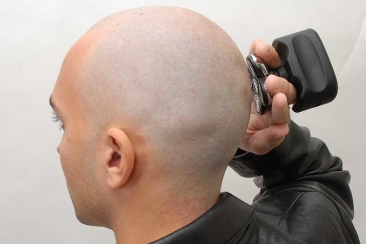 skull-shaver-pitbull-4-1290939-6743277