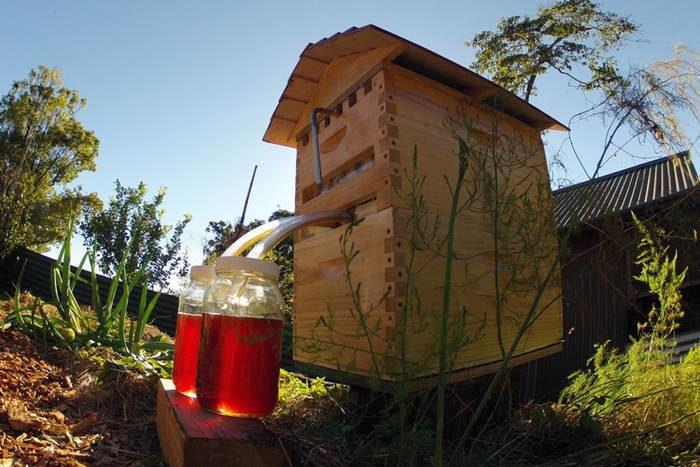 flow-bee-hive-3-8029145-7509799