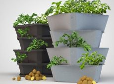 paul-potato-garden-tower-1-2508097-7107482